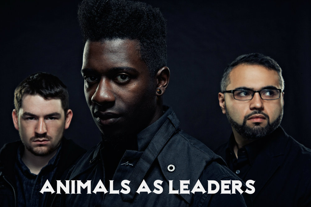 animals as leaders2